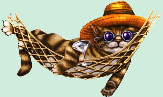 16022012 chat sieste dodo dort lit